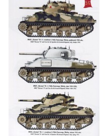 338 Sikorsky's Tanks Polish AFVs of WW II