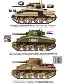 484 SHERMAN 75 MM VOL. 1